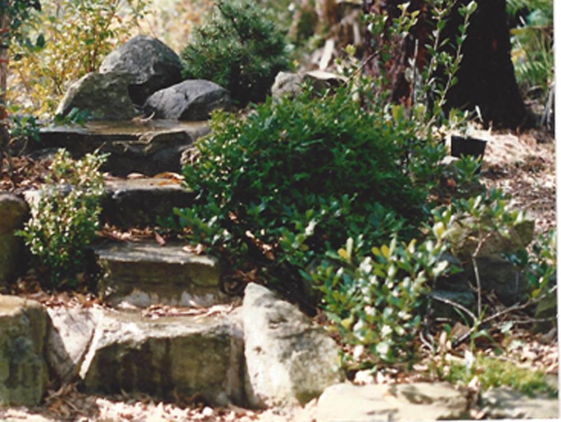 Jim Dormer Landscaping North West Sydney